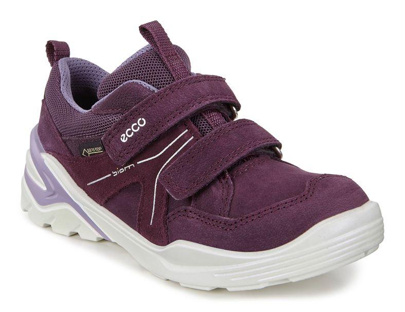 BIOM VOJAGE (Purple)