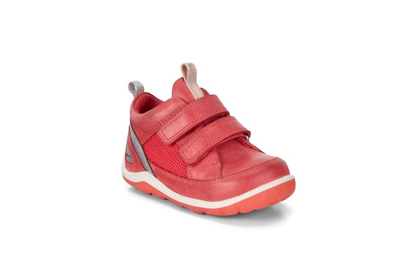 BIOM MINI SHOE (Red)