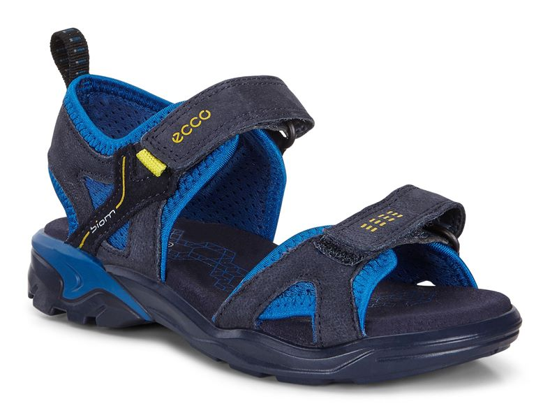 BIOM RAFT (Blue)