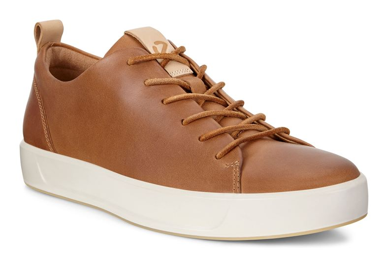 SOFT 8 LX (Brown)