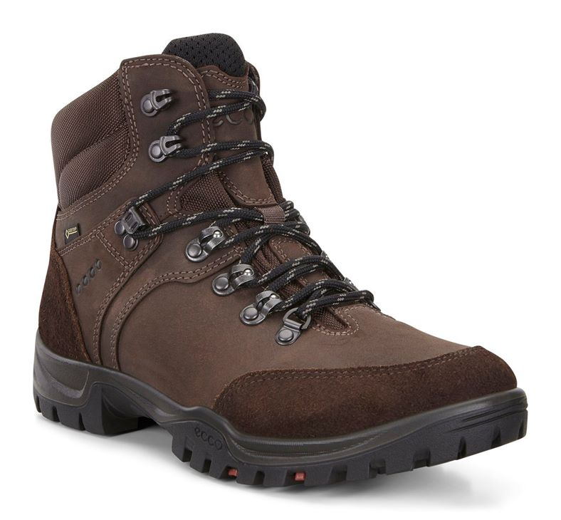 XPEDITION  III M (Brown)