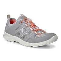 TERRACRUISE LT W (Grey)