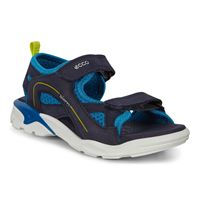 BIOM RAFT (Blue)