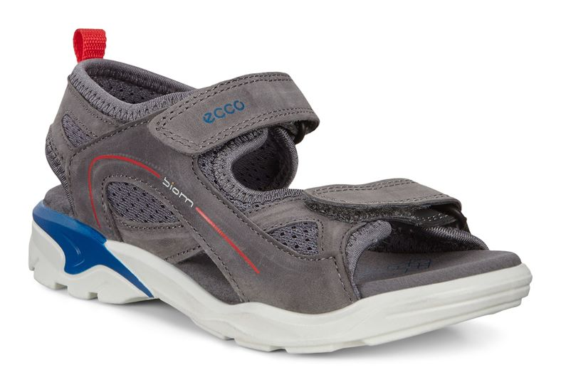 BIOM RAFT (Grey)