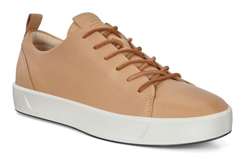 SOFT 8 W (Brown)